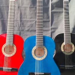 bunte Frühlings-Gitarren - attraktive Preise!